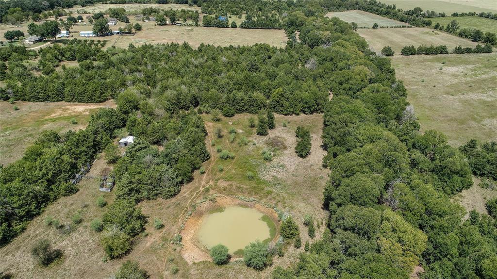 000 (39.62 acres) CR 114, Caldwell, TX 77836 - Caldwell, TX real estate listing