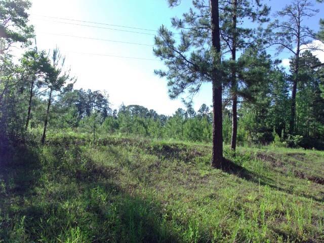 00 County Road 200, Brookeland, TX 75931 - Brookeland, TX real estate listing