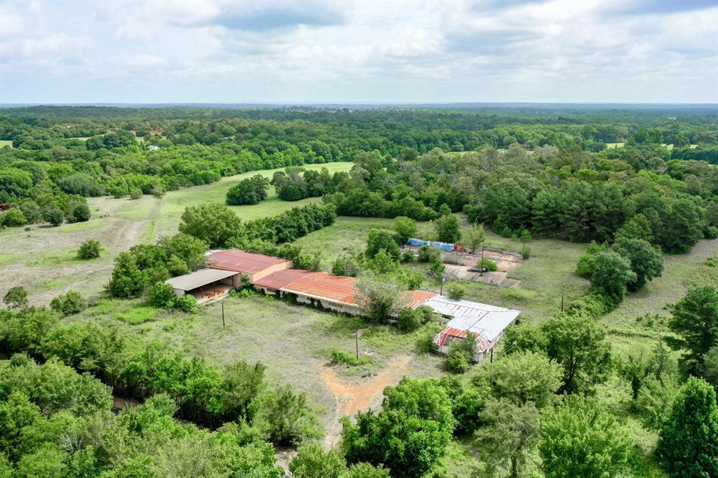TBD CR 416 Property Photo - Leona, TX real estate listing