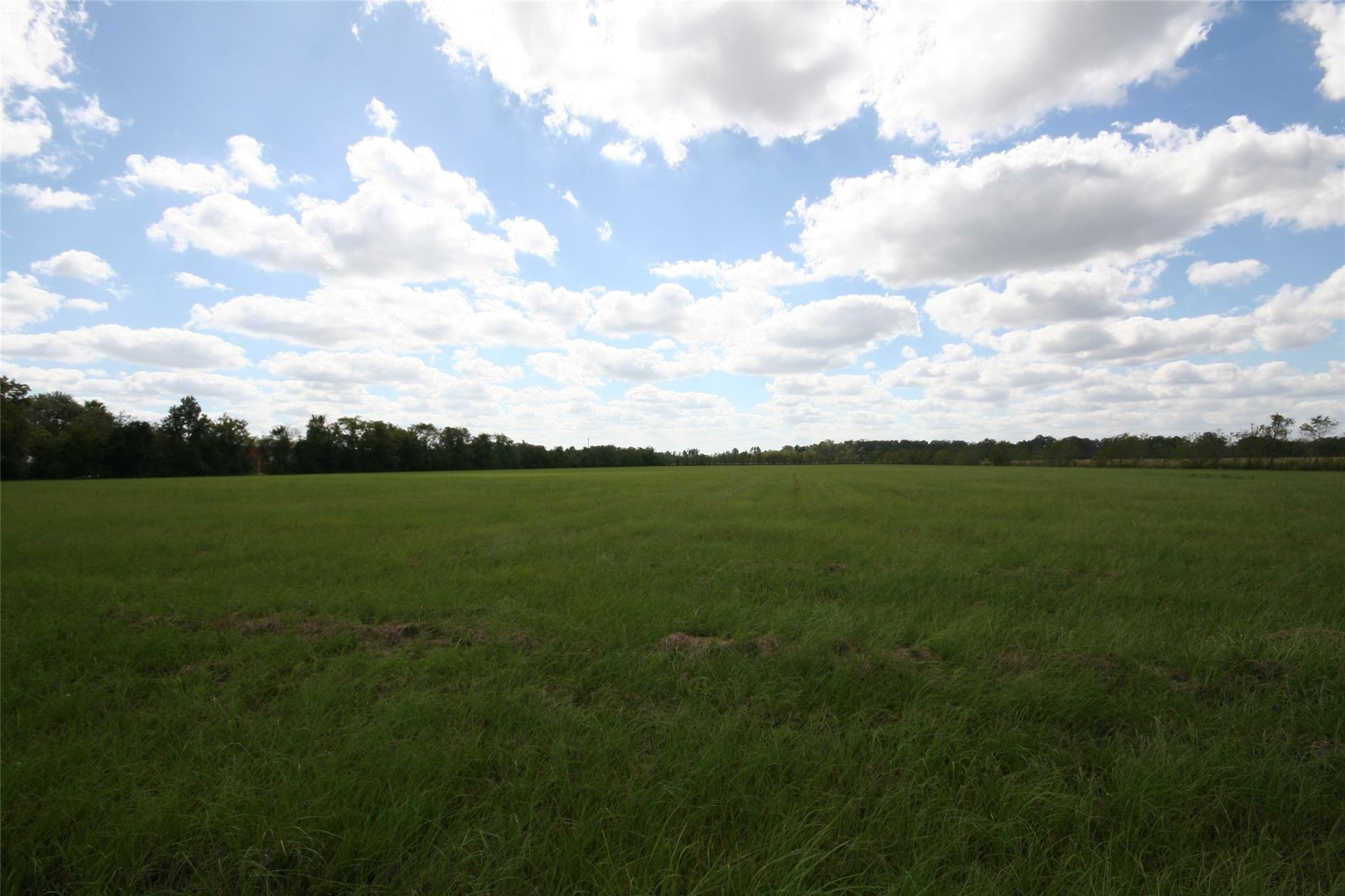 Abst 49j Merry Real Estate Listings Main Image