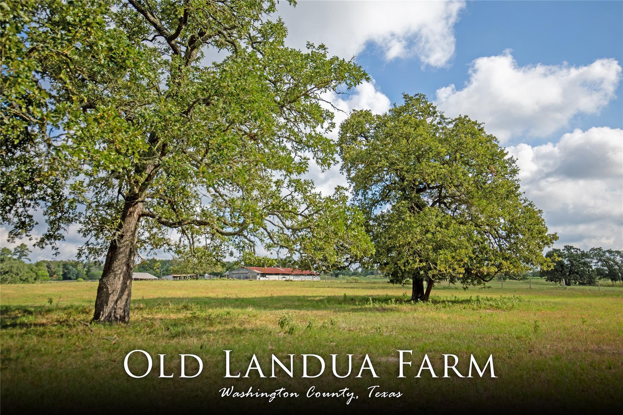 11701 Old Landua Road Property Photo - Burton, TX real estate listing