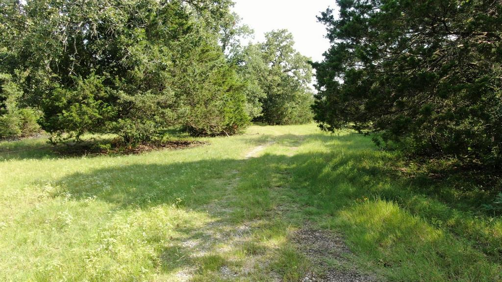 5301 Goehring Road Property Photo - Ledbetter, TX real estate listing