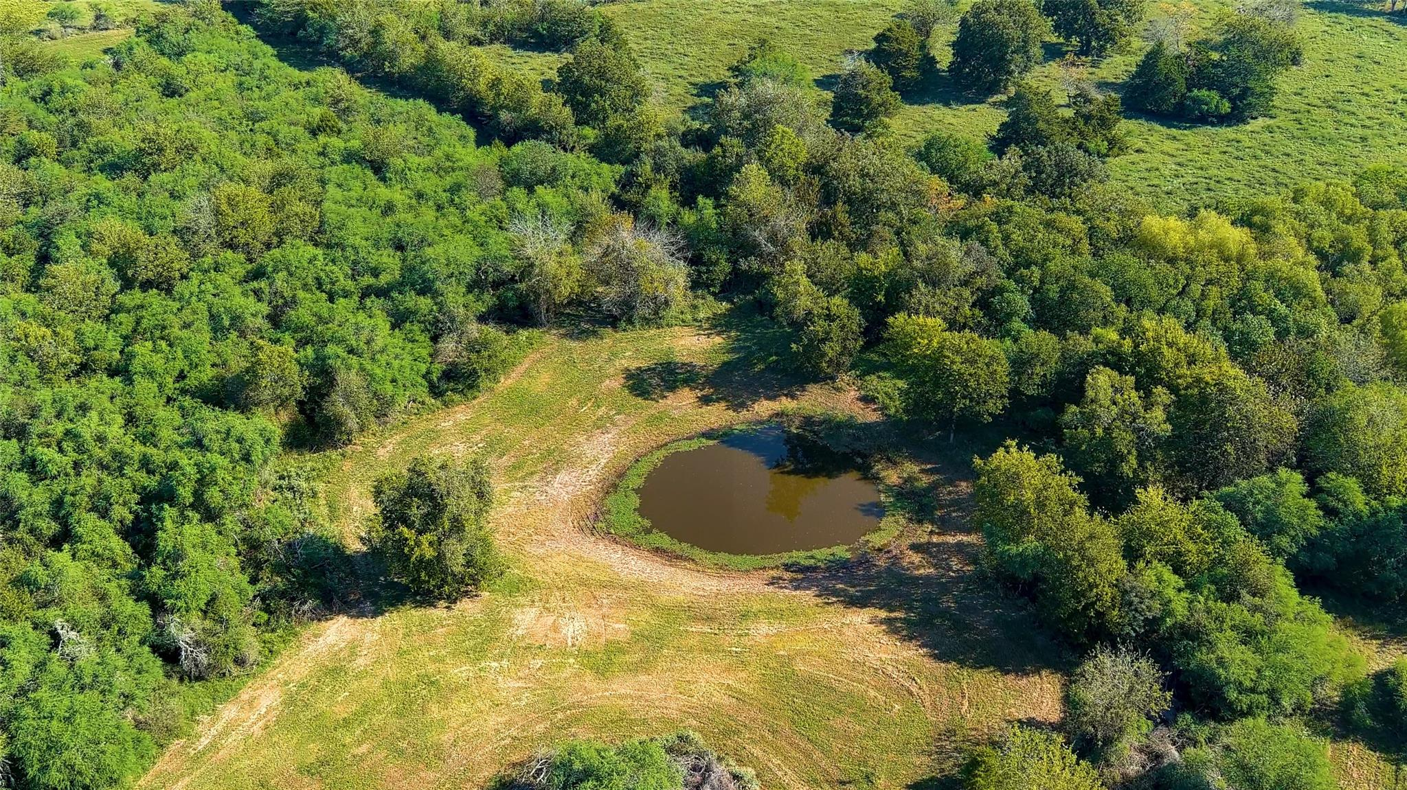 000 Nicholson Lake Road Property Photo - Chappell Hill, TX real estate listing
