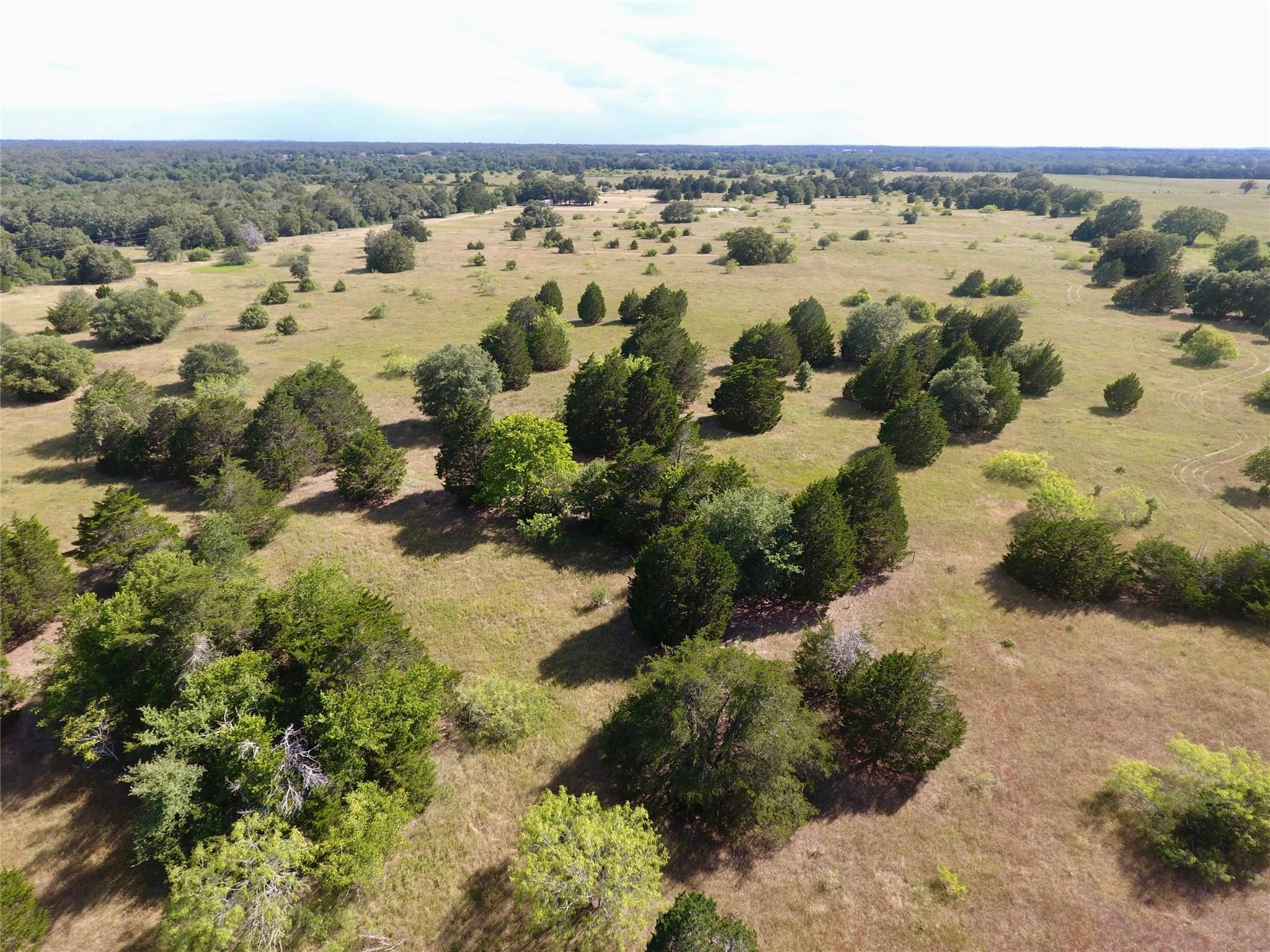 1501 Bell Settlement Road Property Photo - Ledbetter, TX real estate listing