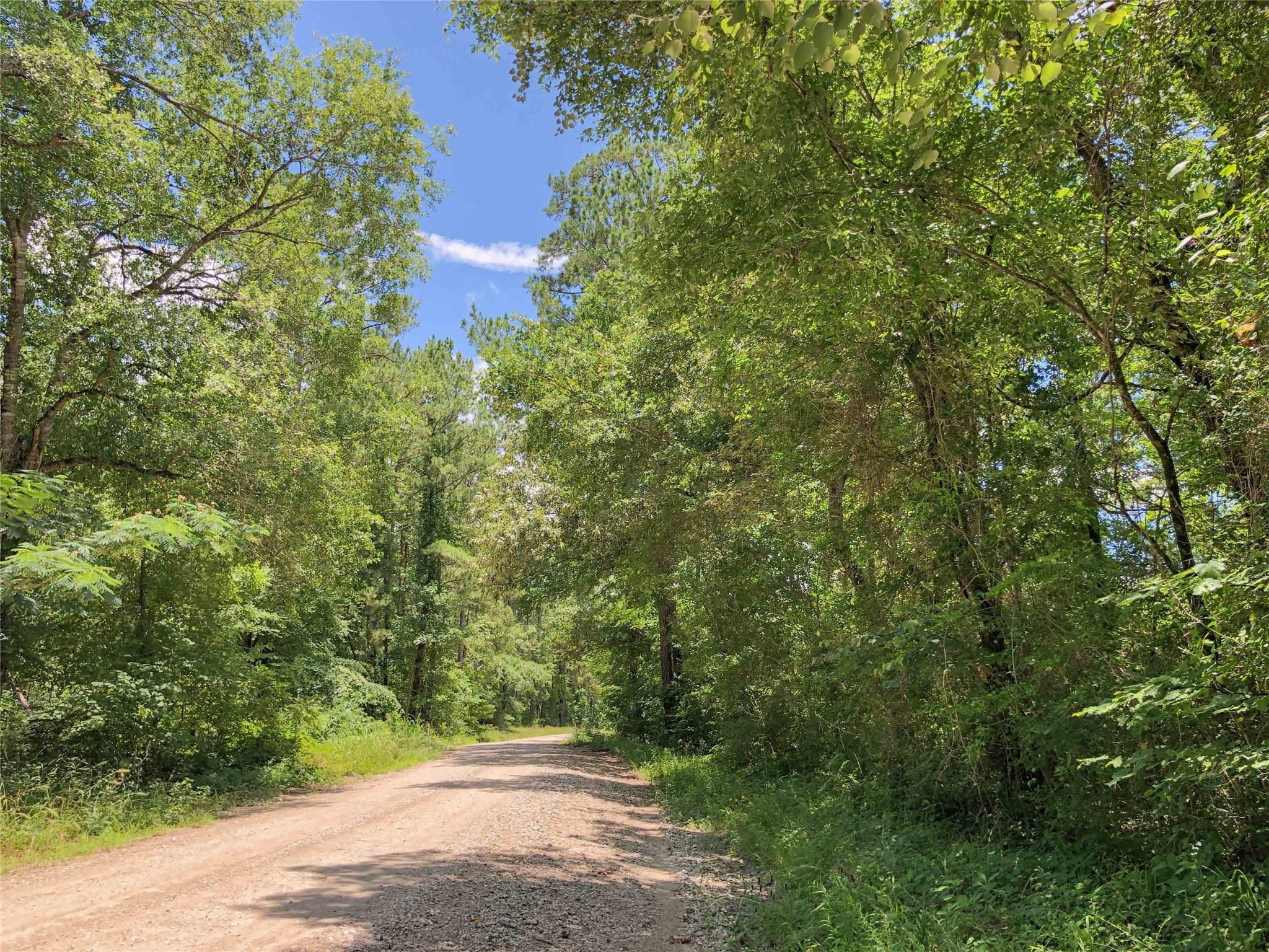 000 Rosenwall Road Property Photo - Huntsville, TX real estate listing