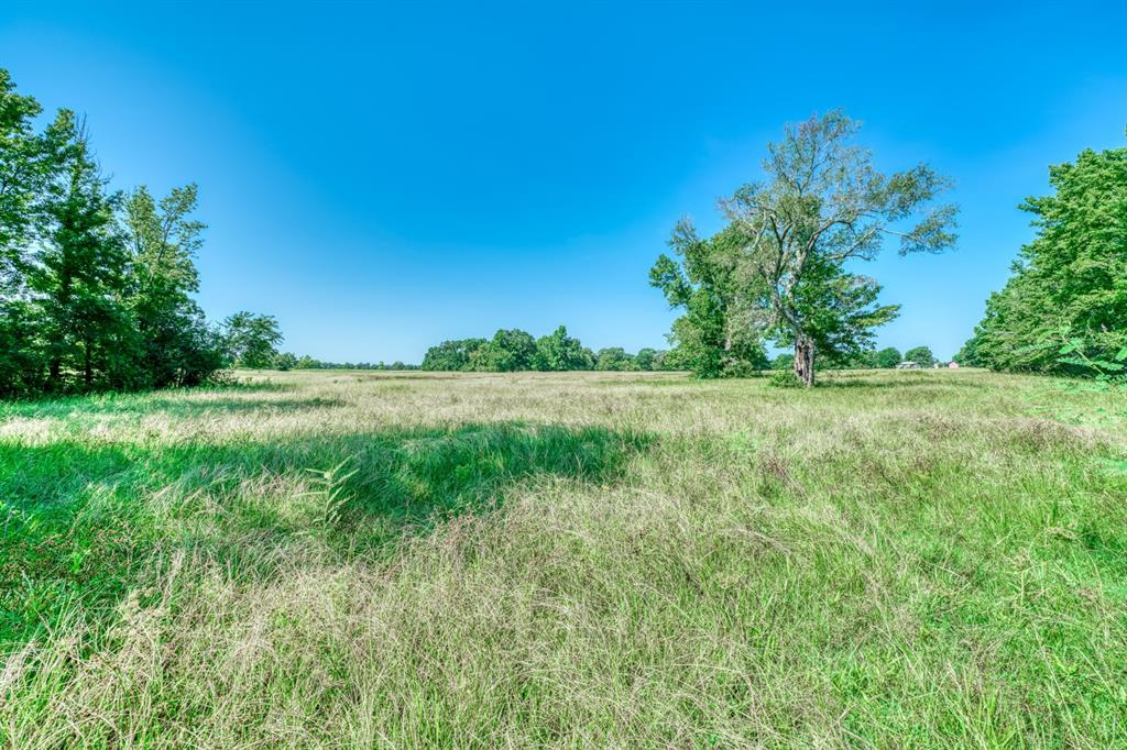 TBD Bozeman Ferry Road, Midway, TX 75852 - Midway, TX real estate listing