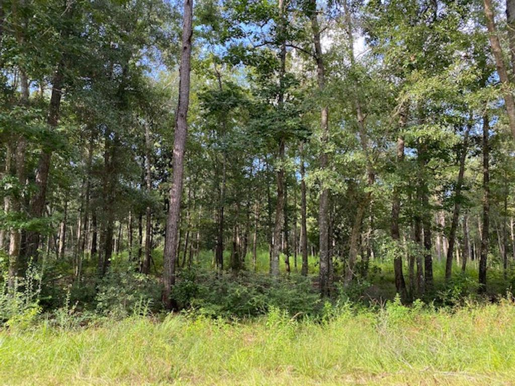 TBD Brown Road Property Photo - Saratoga, TX real estate listing