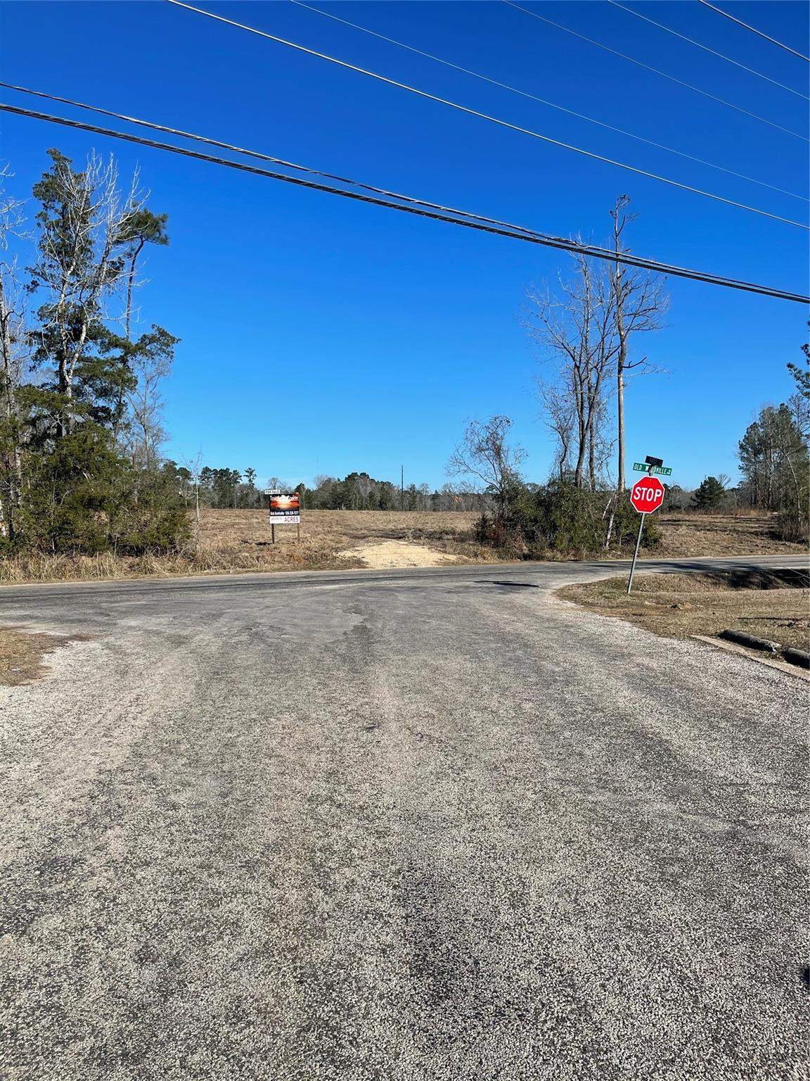 TBD Old Woodville Road Property Photo - Livingston, TX real estate listing