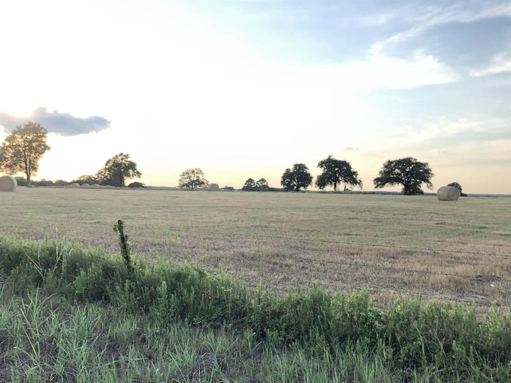 Tract 4 (11.4 ACRES) County Road 200, Giddings, TX 78942 - Giddings, TX real estate listing