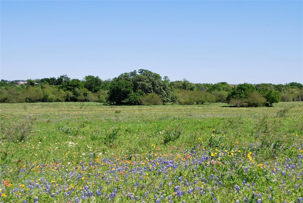 TRACT 4 CR 322 Property Photo - Yoakum, TX real estate listing