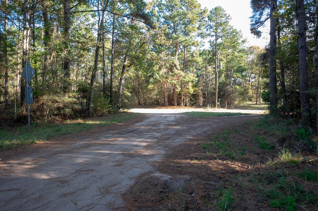tbd County Rd 2800, Colmesneil, TX 75938 - Colmesneil, TX real estate listing