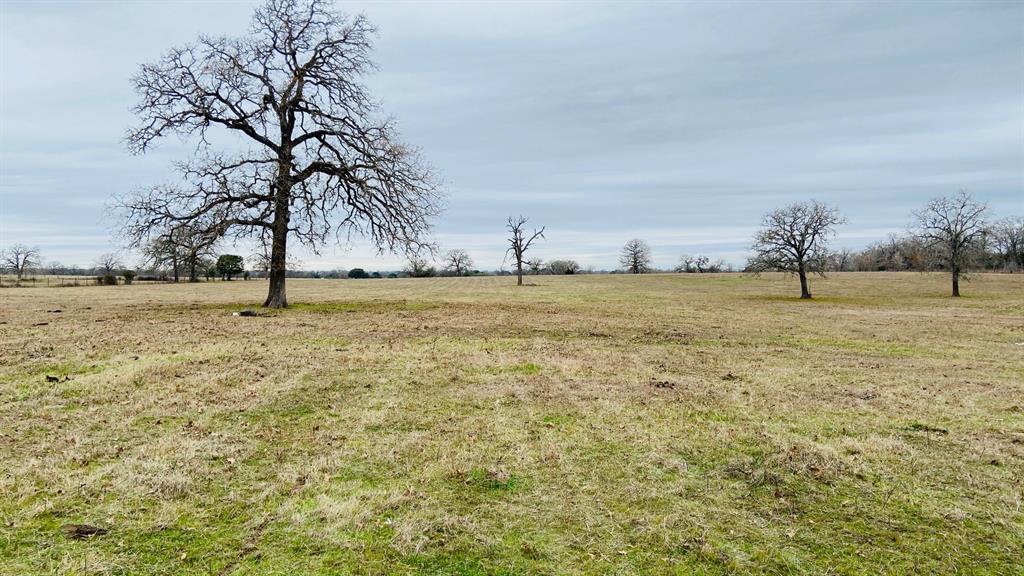 1222 Private Road 1282, Ledbetter, TX 78946 - Ledbetter, TX real estate listing