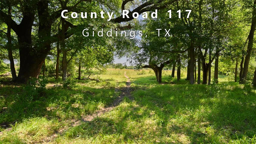 TBD (140.636 acres) County Road 117 Property Photo - Giddings, TX real estate listing