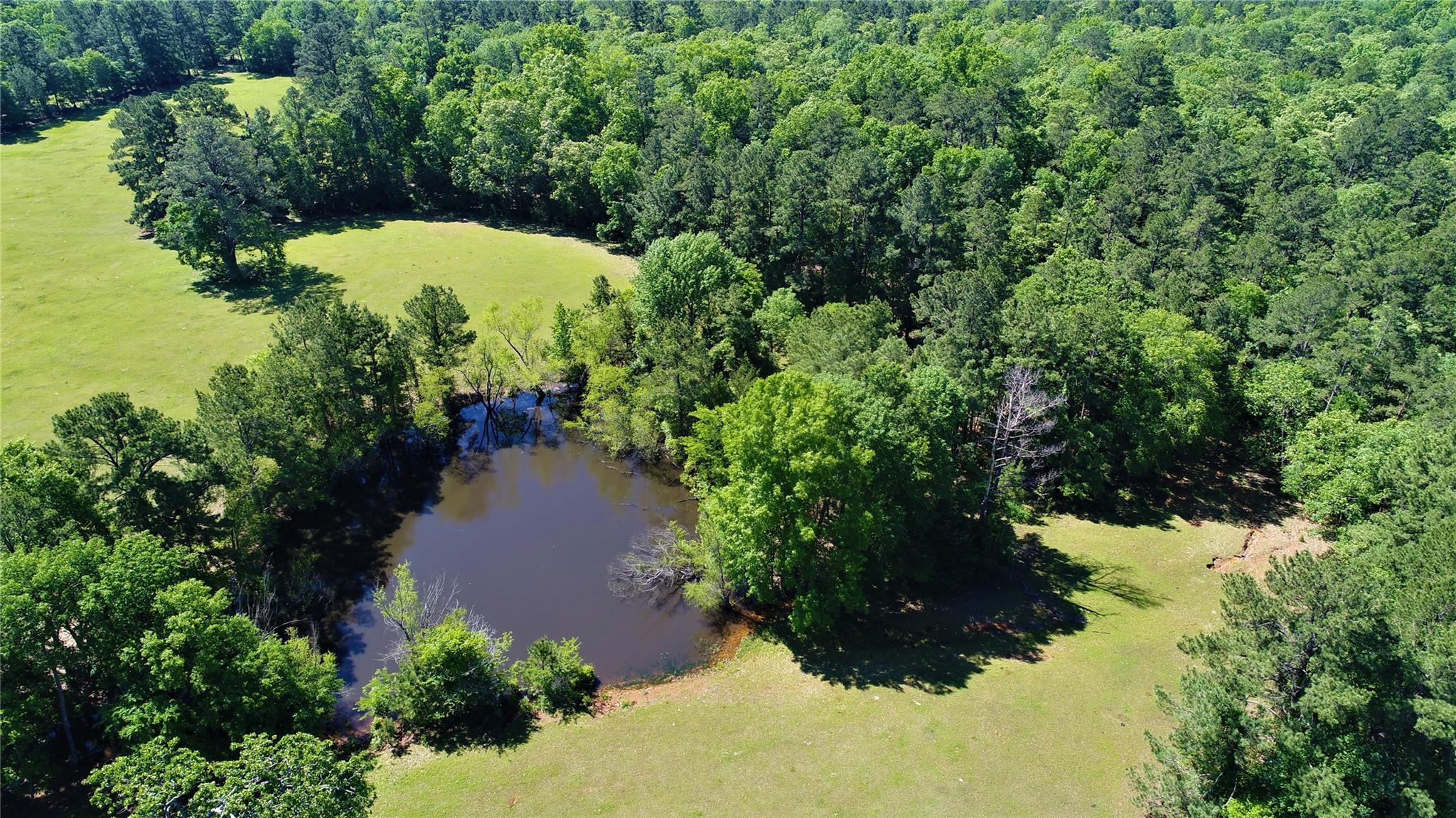 TBD Farm Market 2076 Property Photo - Crockett, TX real estate listing