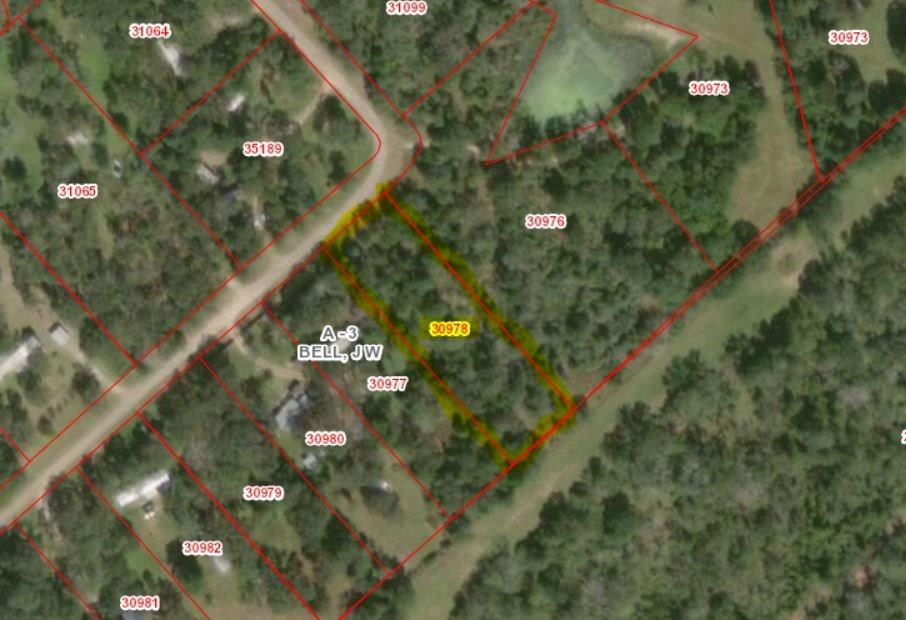0 Swan Lake Drive, Caldwell, TX 77836 - Caldwell, TX real estate listing