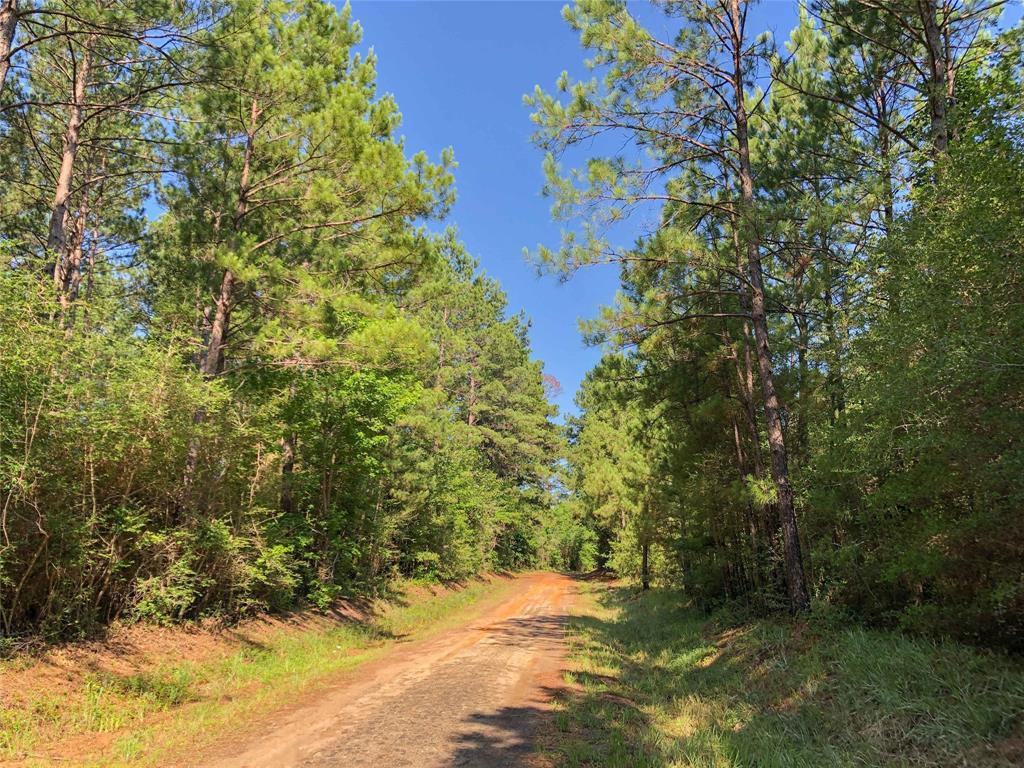 000 CR 368, Zavalla, TX 75949 - Zavalla, TX real estate listing