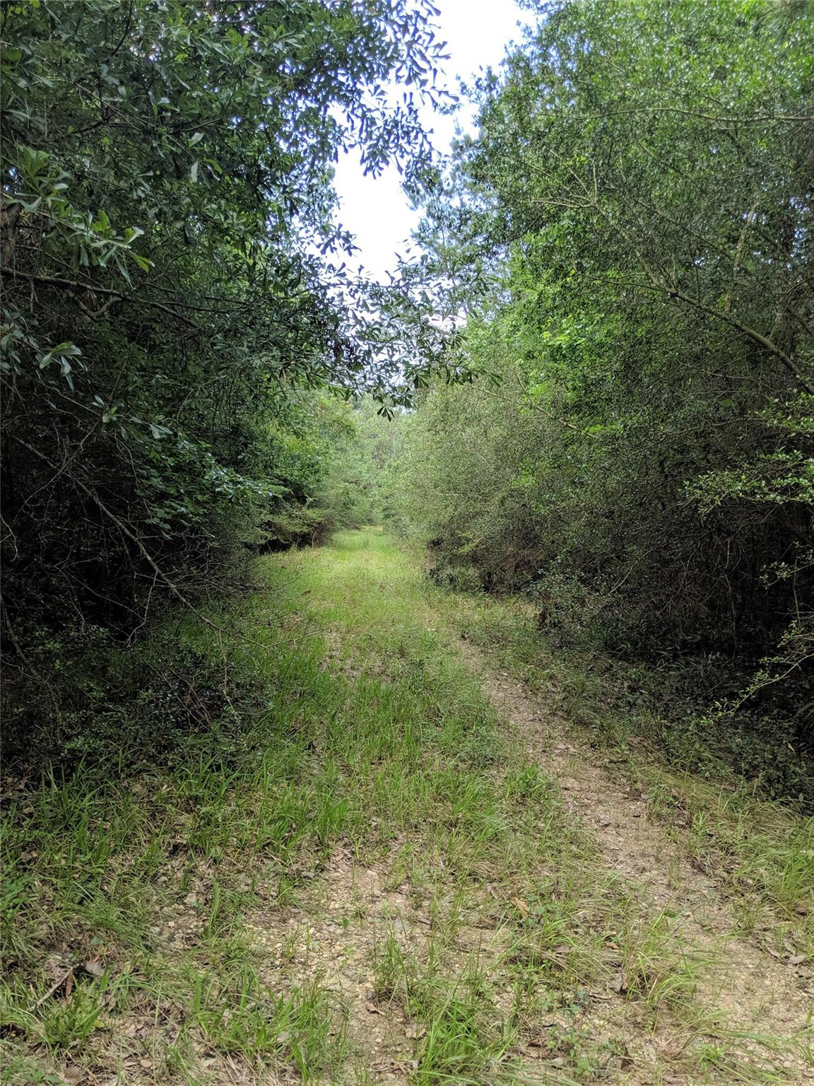 000 Whispering Pines Drive Property Photo