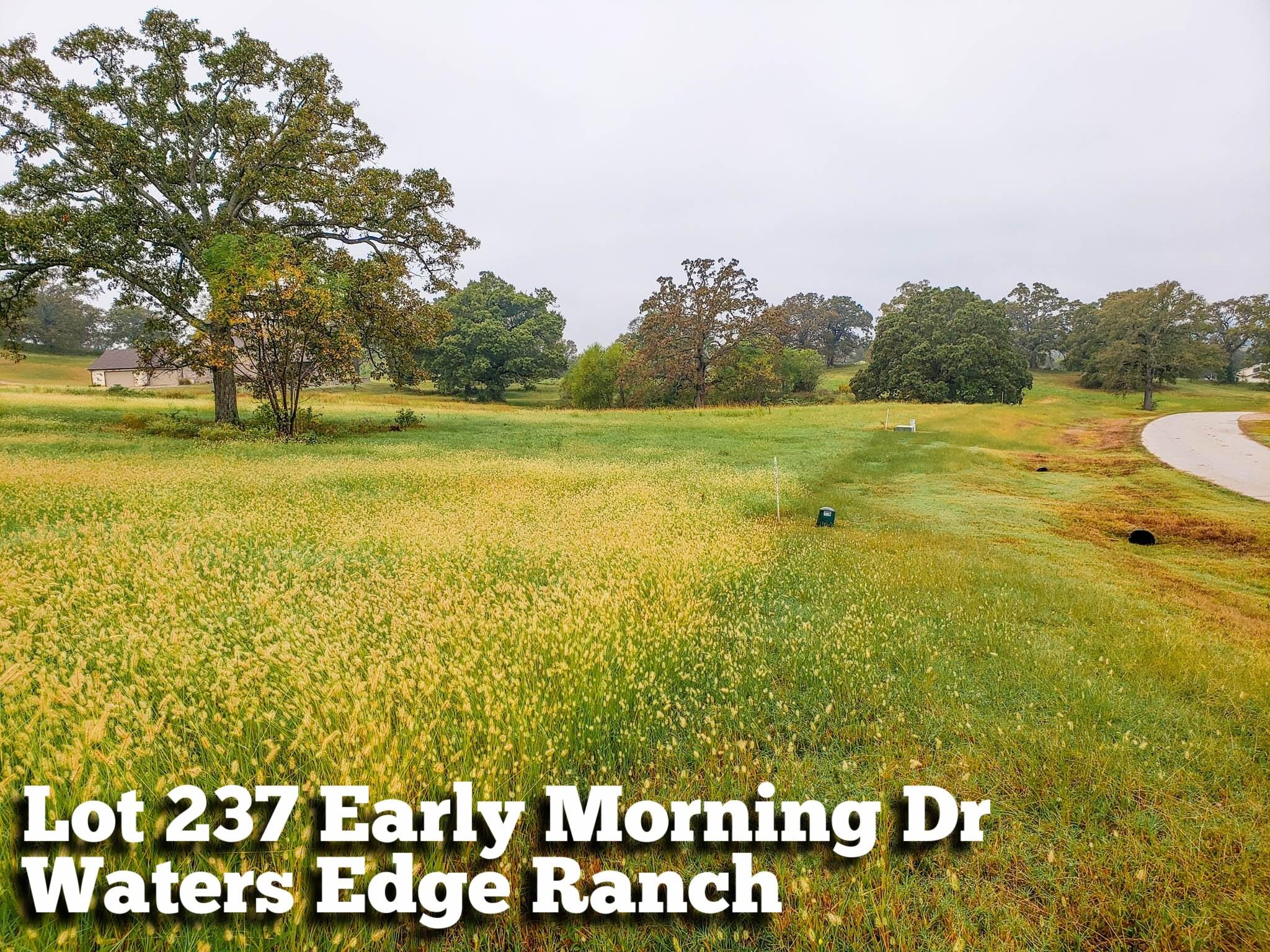 Lot 237 Early Morning Drive Property Photo - Athens, TX real estate listing