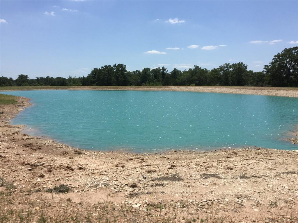 TBD Round Top Road Property Photo - Round Top, TX real estate listing
