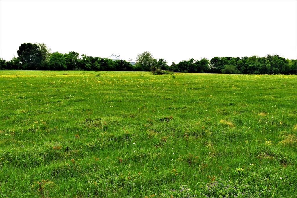 Hwy 59 Southside Hwy 59 Property Photo - Hungerford, TX real estate listing