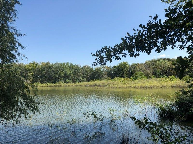 Lots 4-7 LCR 915 Property Photo - Jewett, TX real estate listing