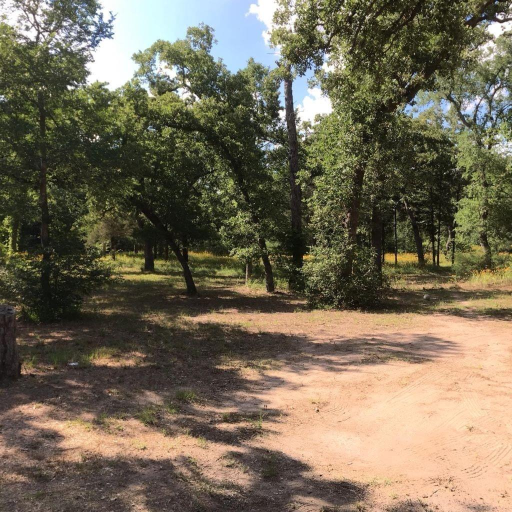 313 &315 Oak Forest Road Property Photo