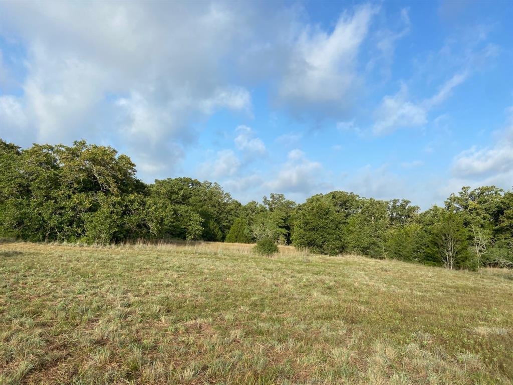 000 County Road 327 Property Photo - Rockdale, TX real estate listing