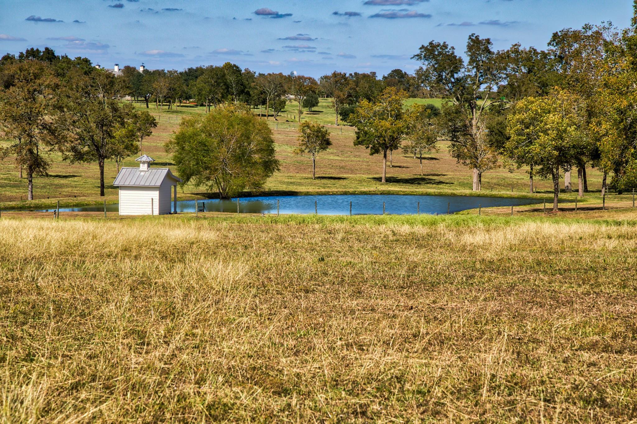 00 Tract B Farm To Market 2447 E Property Photo 1