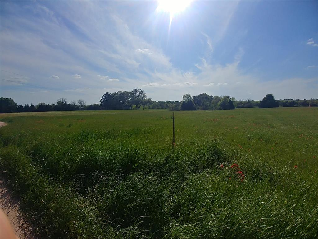 000 Red Tip Lane, Brenham, TX 77833 - Brenham, TX real estate listing