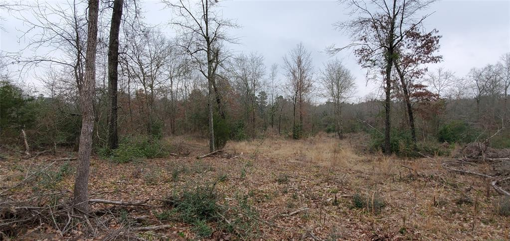 Tract 2 Crofford Street Property Photo - Jefferson, TX real estate listing