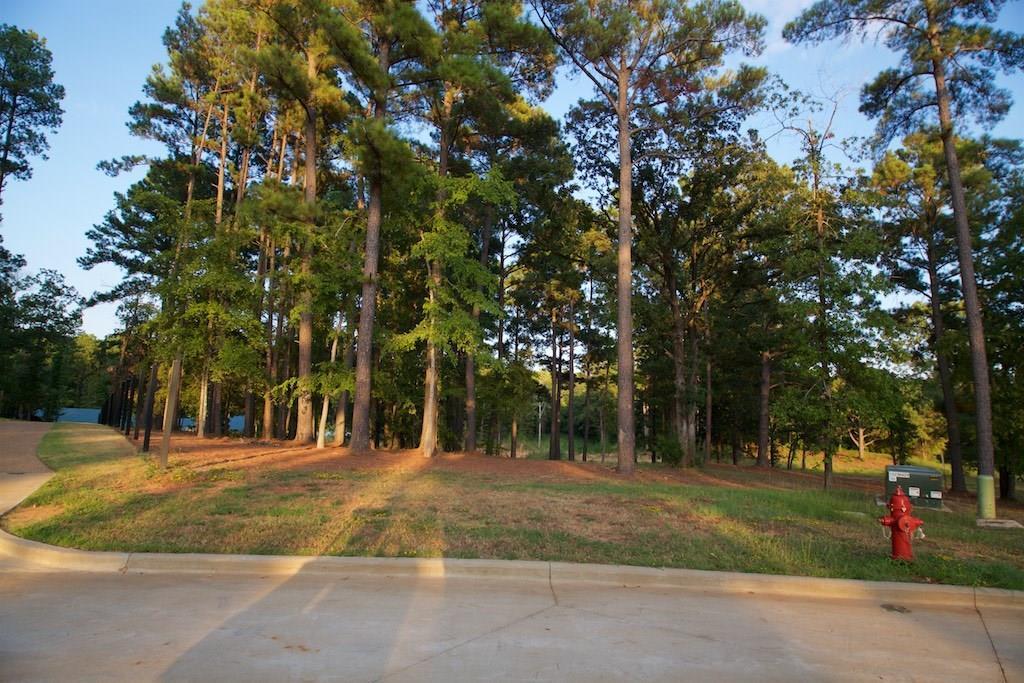 22251 Mallards Cove Ct Property Photo - Bullard, TX real estate listing