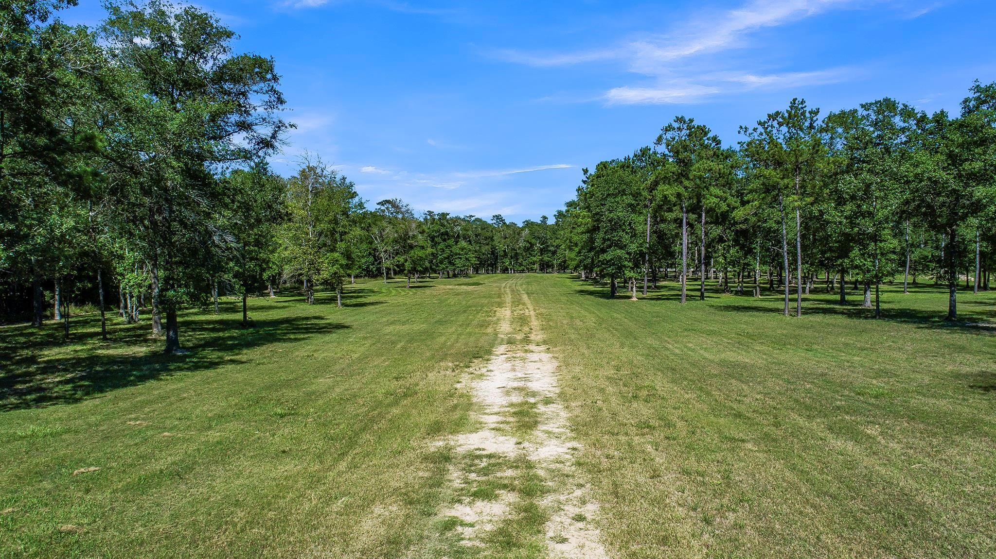 222 Echo Lane Property Photo - Huffman, TX real estate listing