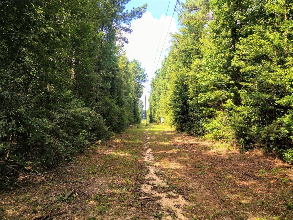 0000 Co Road 427, Kirbyville, TX 75956 - Kirbyville, TX real estate listing