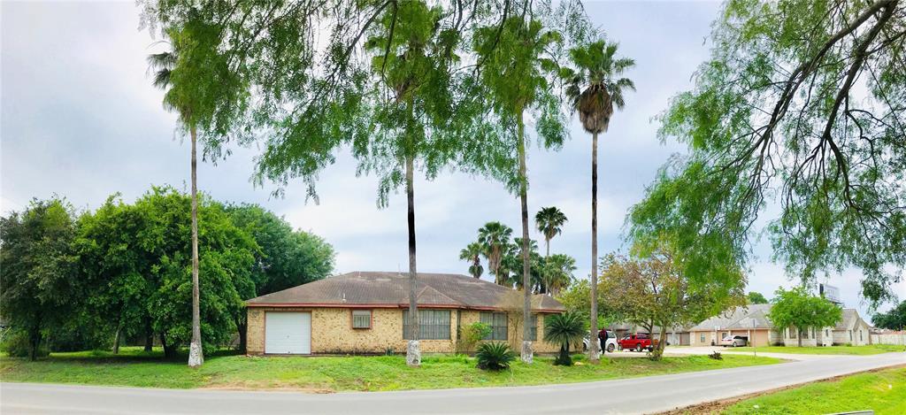 1305 Marla Drive, Palmview, TX 78572 - Palmview, TX real estate listing