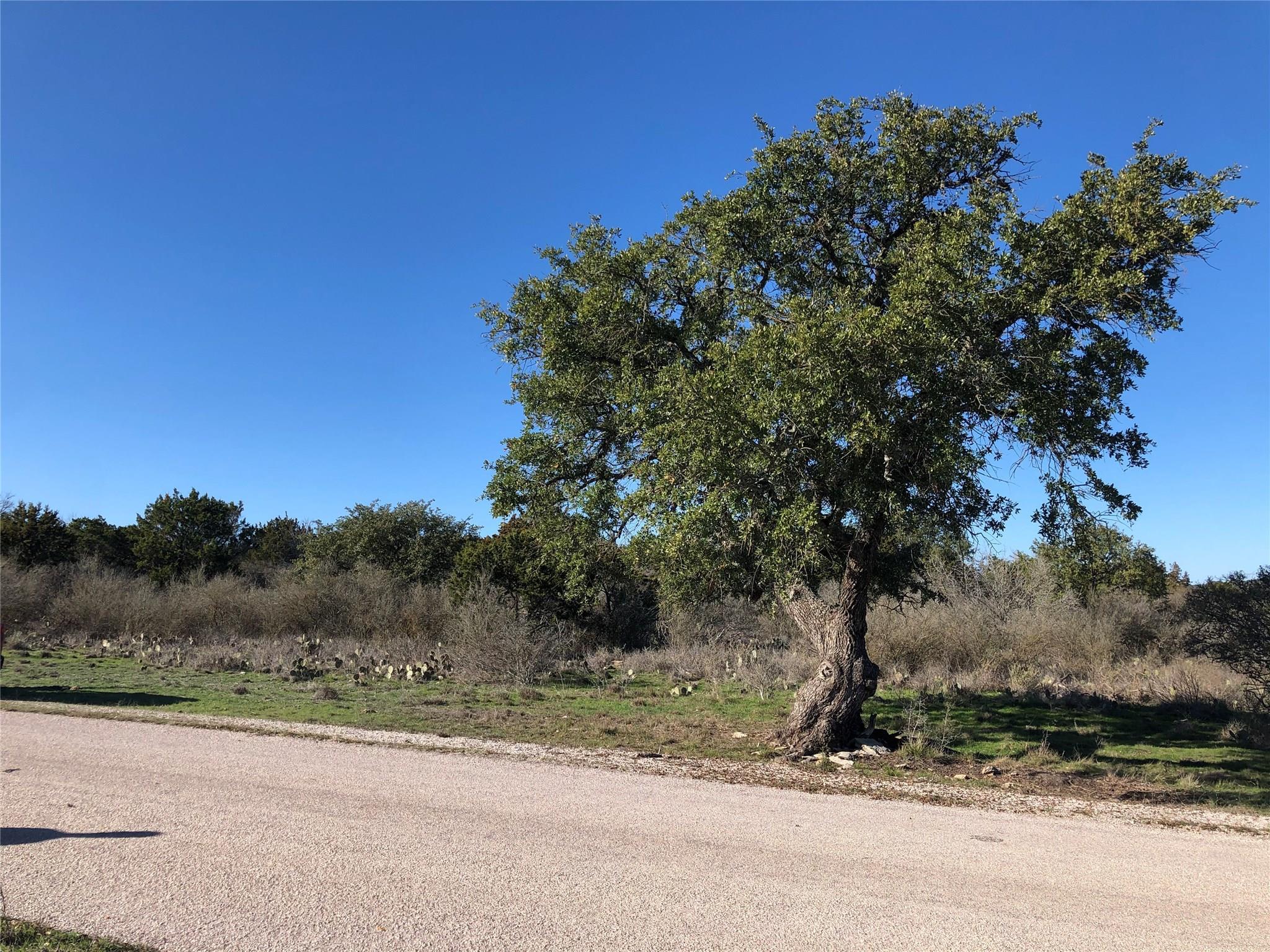 0 Thrill Hill Trail Trail Property Photo - Burnet, TX real estate listing