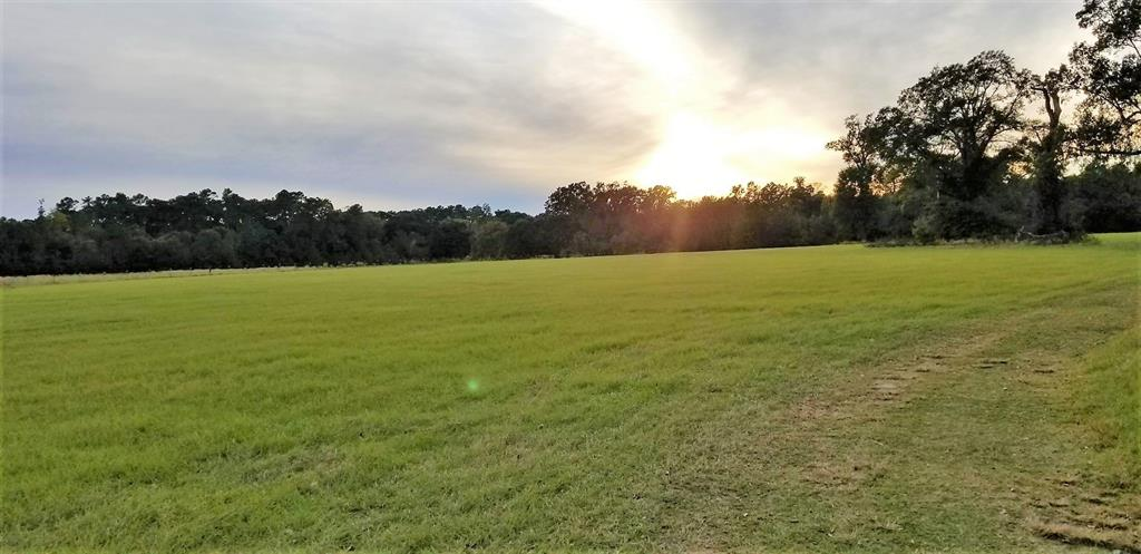 2306 S Fm 1486 Road Property Photo - Montgomery, TX real estate listing
