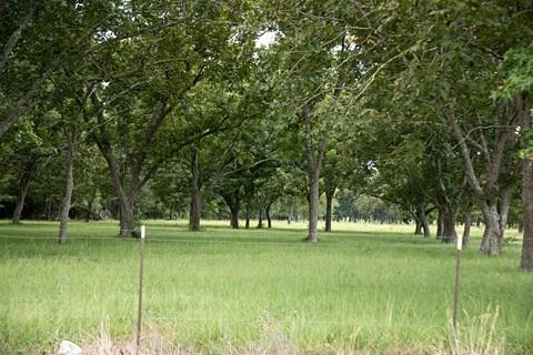 4132 Fm 1127 Road Property Photo