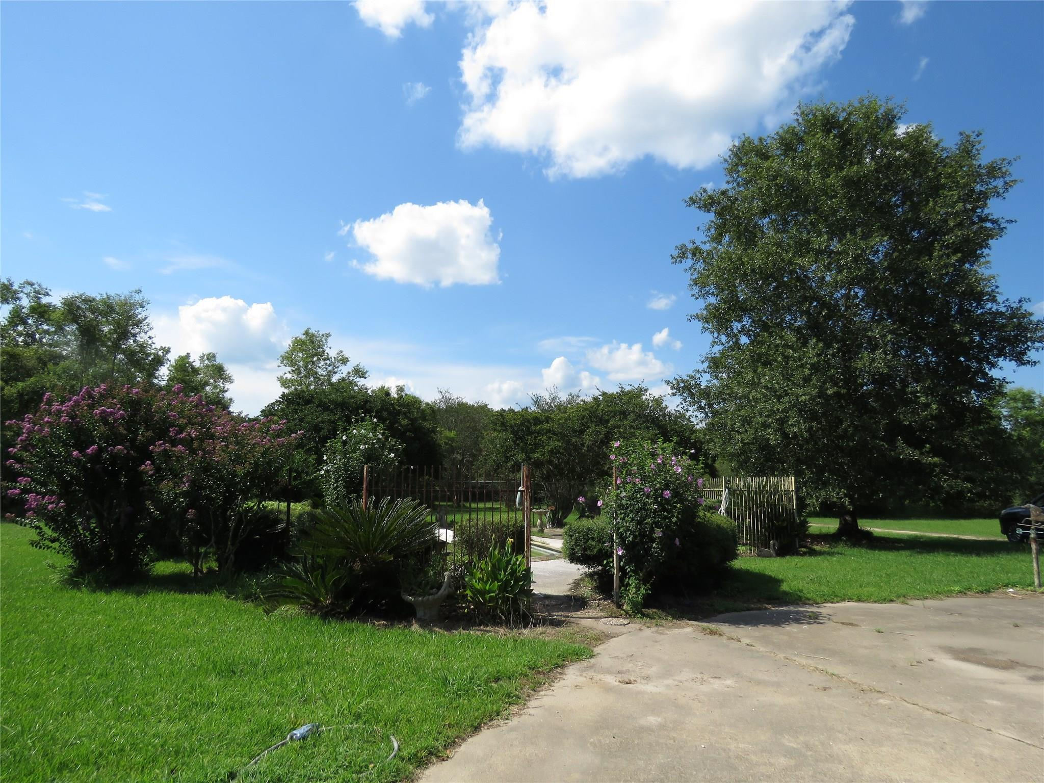 310 Private Road 107 Property Photo - Devers, TX real estate listing