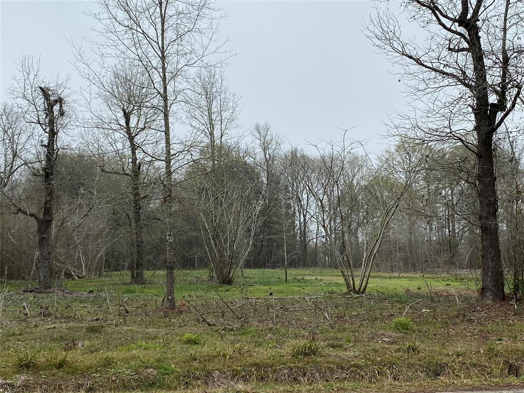 00 County Road 826, Buna, TX 77612 - Buna, TX real estate listing