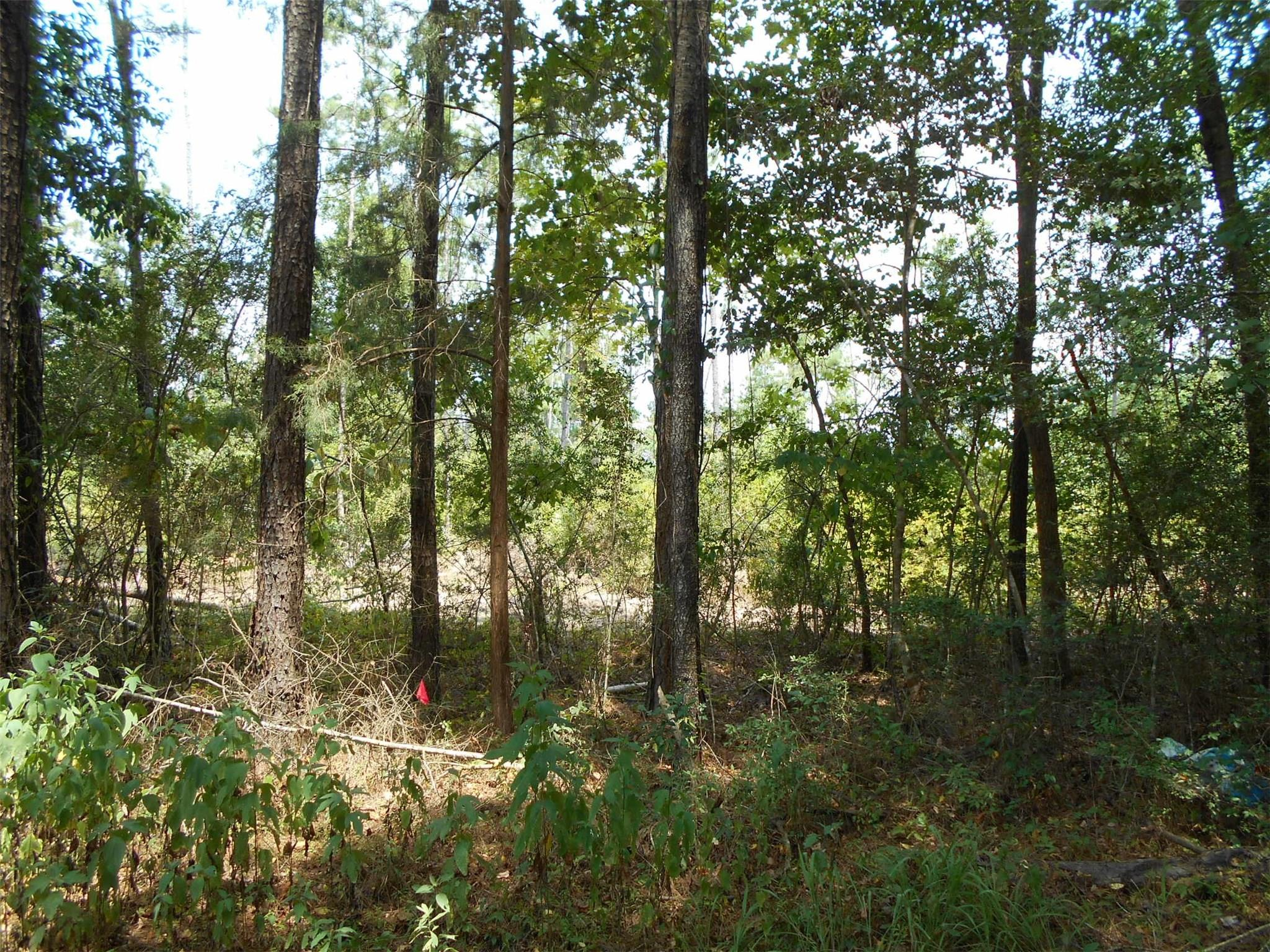 00 Kelley Rd Property Photo - Votaw, TX real estate listing