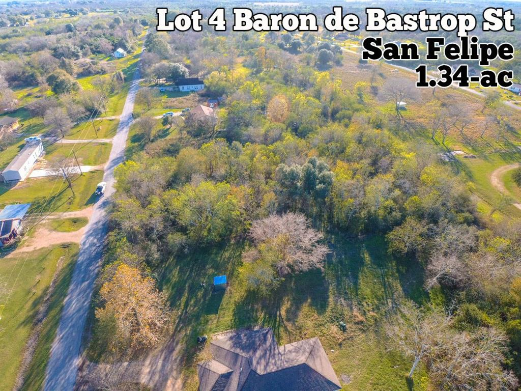 4419 Baron De Bastrop Street Property Photo - San Felipe, TX real estate listing