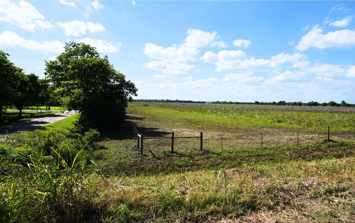 0 County Road 167 Property Photo