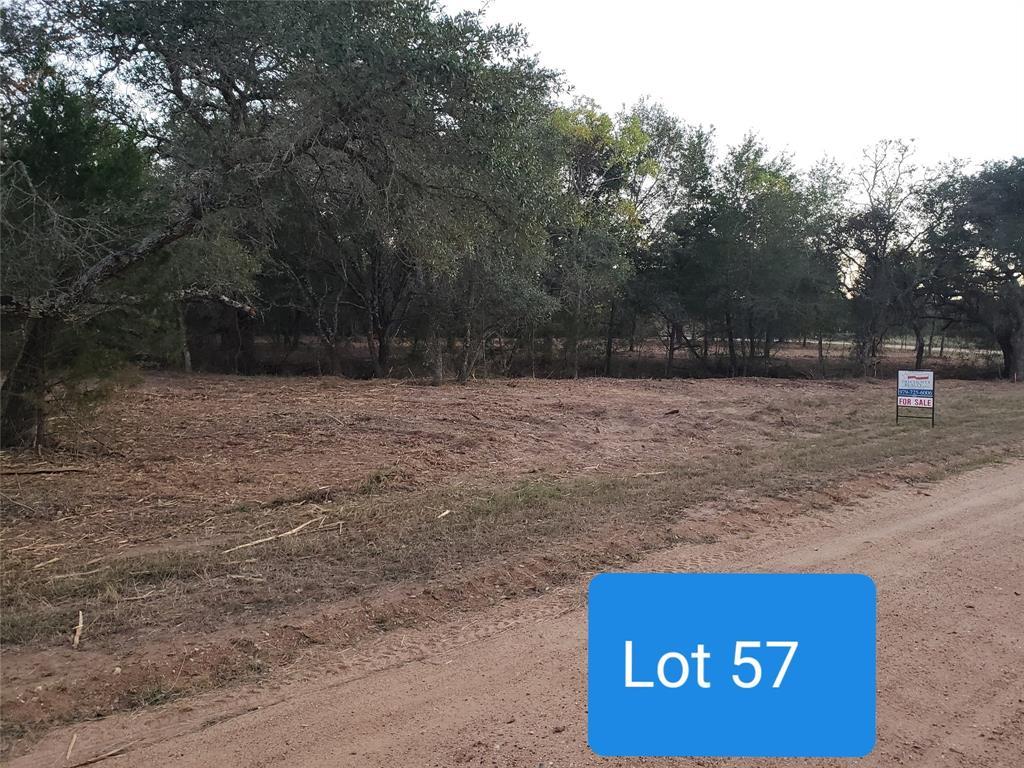 000 Crooked Creek Drive, Sheridan, TX 77475 - Sheridan, TX real estate listing