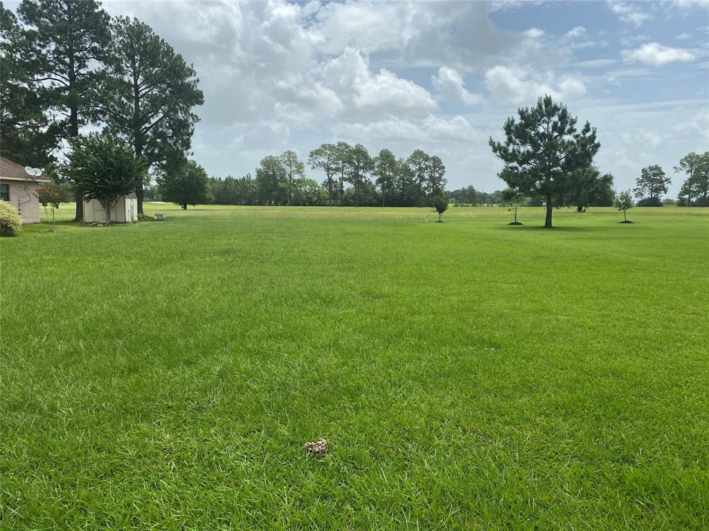 15538 Sandtrap Property Photo - Waller, TX real estate listing