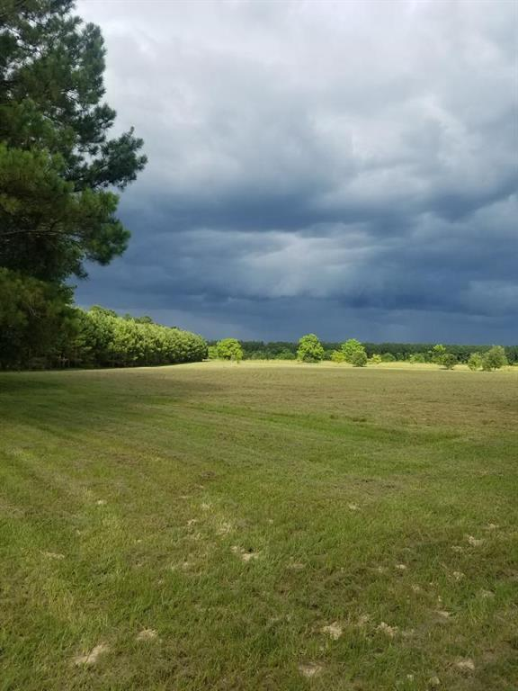 TBD Sugar Maple Road Property Photo - Kountze, TX real estate listing