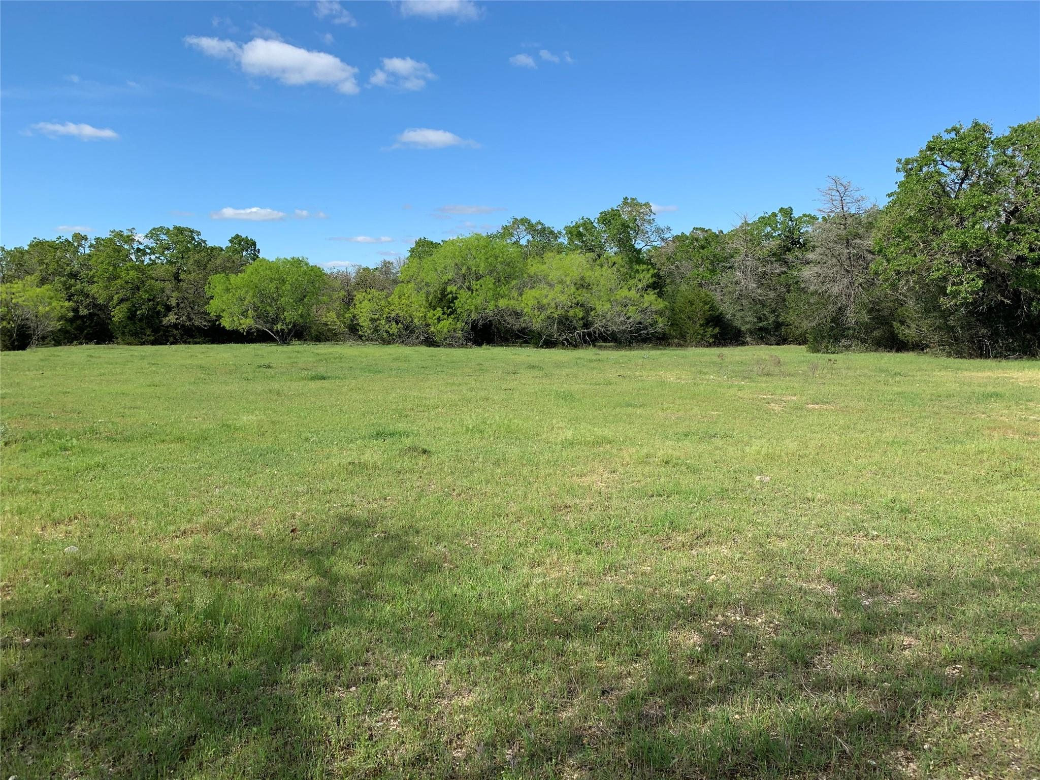 TBD Greens Creek Rd Road Property Photo - Ledbetter, TX real estate listing