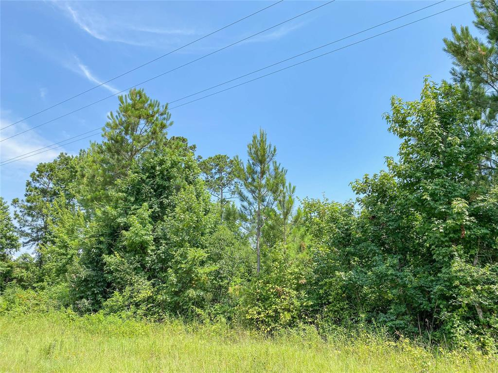 0 Red Hollow Rd Property Photo - Leggett, TX real estate listing
