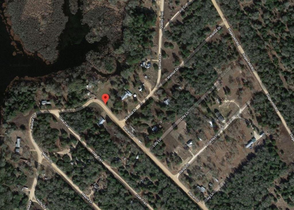 0 Walnut Drive, Caldwell, TX 77836 - Caldwell, TX real estate listing