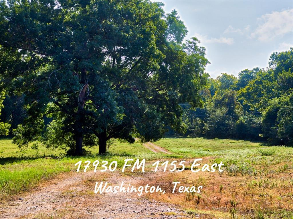 17930 Fm 1155, Washington, TX 77880 - Washington, TX real estate listing