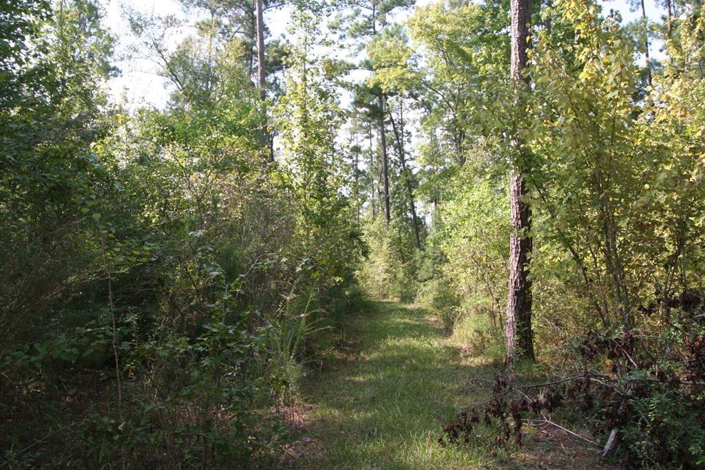 701 Leslie Lane Property Photo - Lufkin, TX real estate listing